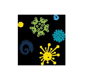 Antibacteries® |Problématiques